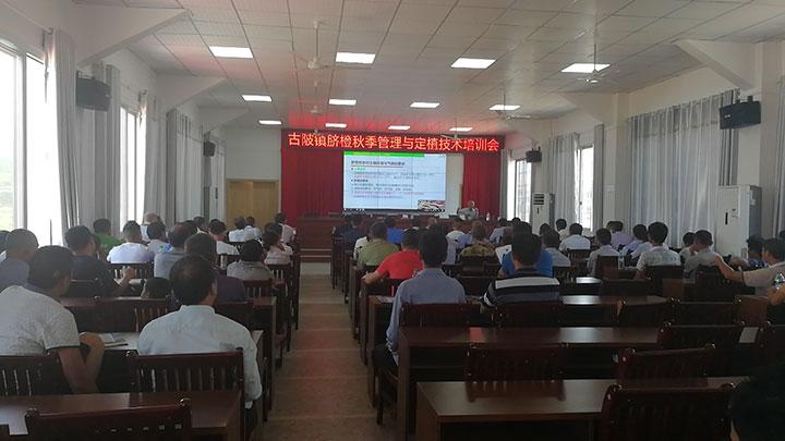 古陂镇举办脐橙秋季管理与定植技术培训会