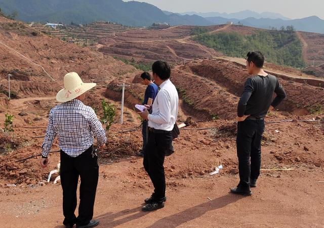 大塘埠镇组织果茶员和果技联络员指导春季果园管理